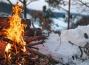с 1 января 2021 года на территории СНТ запретят сжигать мусор